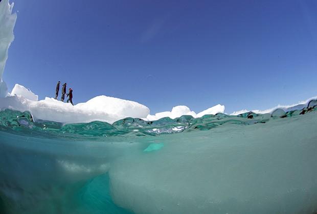 Membros da expedição sobre bloco de gelo próximo a local onde fotógrafo mergulhou (Foto: Divulgação/Daniel Botelho)