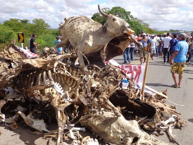 protesto ponto novo (Foto: Jeorge Carvalho/TV São Francisco)
