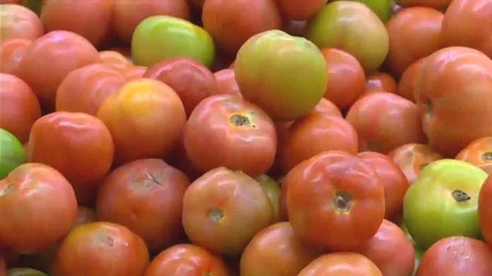 Tomate foi um dos itens que sofreu reajuste de preço (Foto: Jornal de Rondônia)