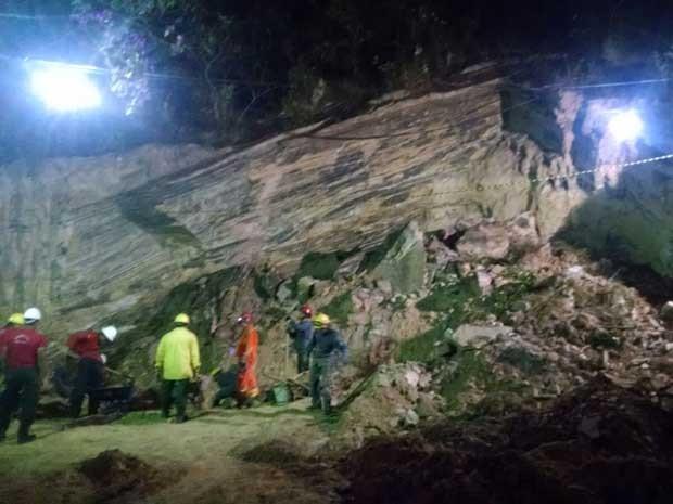 Bombeiros fizeram buscas durante a madrugada (Foto: Bombeiros MG/Divulgação)