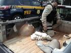 Polícia apreende maconha e ecstasy em veículo na BR-153 em Rio Preto