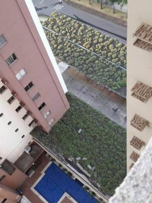 Teto verde foi montado em estacionamento de prédio em Goiânia, Goiás (Foto: Thais Barbosa/Arquivo Pessoal)