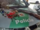 Operação Caça apreende seis armas e 126 munições no Oeste Paulista