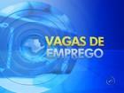 Confira as vagas de emprego para três cidades do noroeste paulista