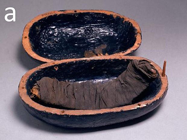 Pedaço de carne da costela de múmia encontrada na tumba de Yuya e Tjuiu (1386-1349 a.C.) (Foto: Image courtesy of PNAS)