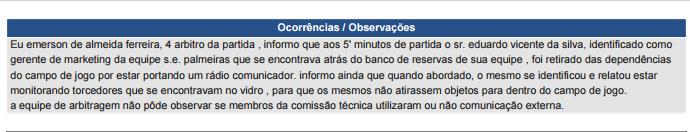 Sumula Palmeiras x Fluminense (Foto: GloboEsporte.com)