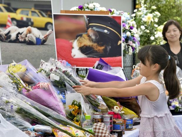Menina deixa flores no funeral da gata Tama, em Kinokawa (Foto: Chika Oshima/Kyodo News via AP)