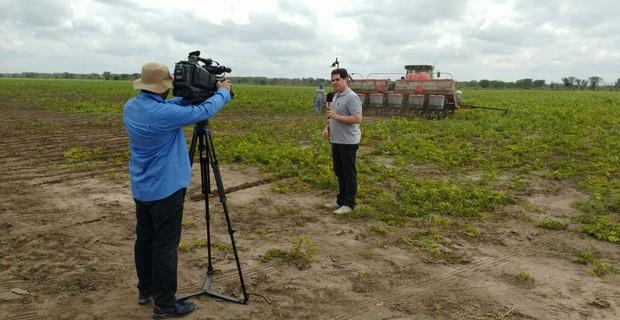 Clube Rural deste domingo (05) mostra a cultivo de soja no município de São Gonçalo (Foto: Isabel Teles/TV Clube)