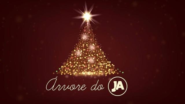"""Campanha """"Árvore do JA"""" arrecadará brinquedos  (Foto: RBS TV/Divulgação)"""