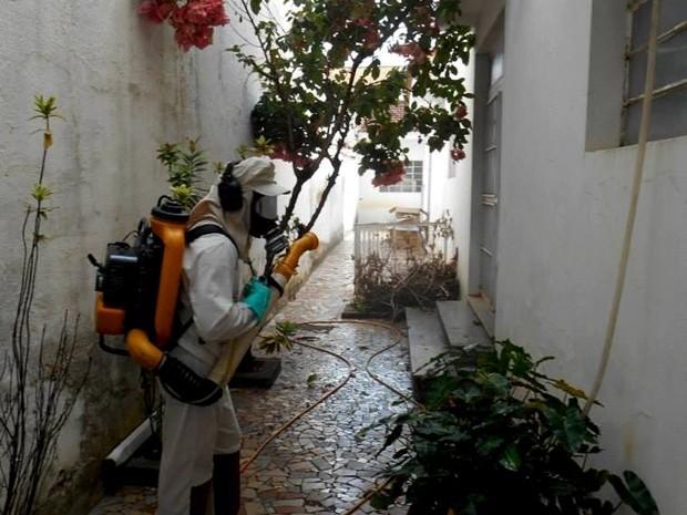 Empresa está sendo contratada para realização de pulverizações nas residências  (Foto: Divulgação/prefeitura)