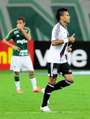 Wanderson gol Ponte Preta x Palmeiras (Foto: Marcos Ribolli)