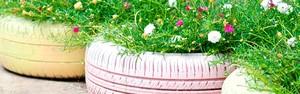 Mudanças melhoram a vida e ajudam a natureza (Shutterstock)
