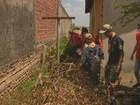 Campinas e Paulínia têm 3,1 mil casas visitadas em 2º mutirão contra Aedes