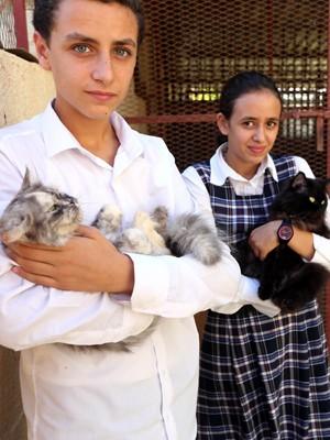 Os filhos do veterinário líbio Khalal Kaal mostram gatos resgatados pelo pai em sua clínica em Tripoli  (Foto: AFP Photo/Mahmud Turkia)
