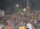Carnaval reúne 10 mil foliões  (Adonias Silva/G1)