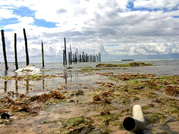 Plástico industrial se mistura a pedras em praia de Maceió (Foto: Waldson Costa / G1)
