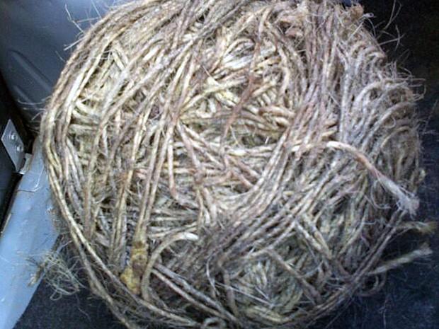 Material encontrado nos escombros  (Foto: Genildo Lawinscki / TV Bahia)