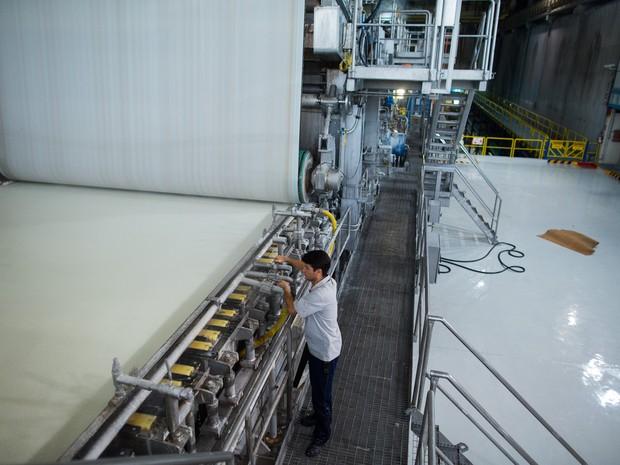 Fibria indústria celulose Jacareí (Foto: Victor Moriyama)