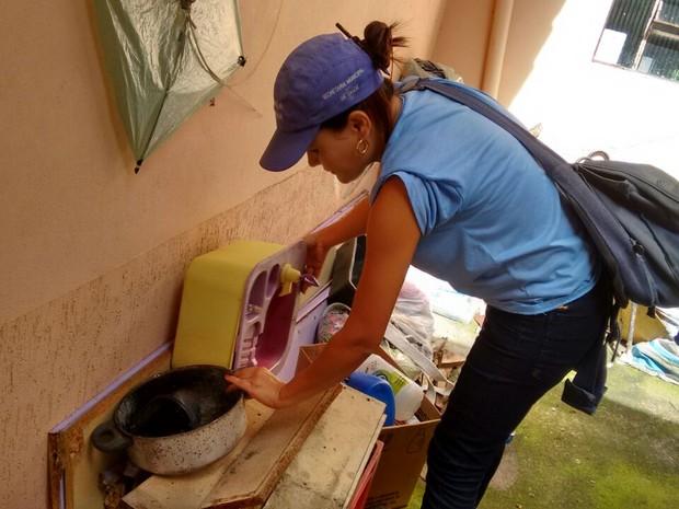dengue divinópolis semusa (Foto: Semusa/Vigilância Ambiental)