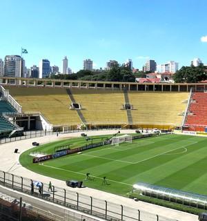 estádio Pacaembu final Paulista (Foto: Bruno Giufrida)