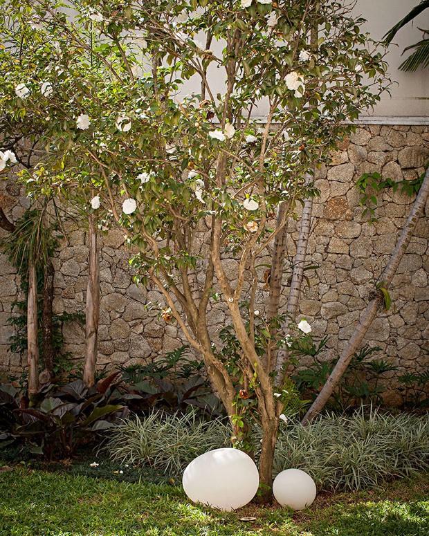 O jardim projetado por Catê Poli, ganhou árvore jabuticabeira  (Foto: Gui Morelli / Editora Globo)