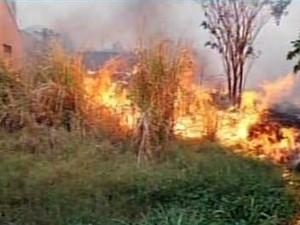 fogo carmo da mata (Foto: Reprodução/TV Integração)
