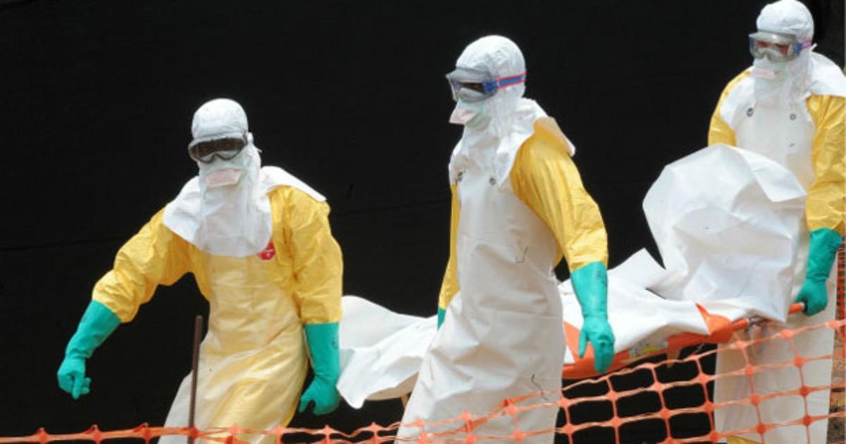 OMS teme disseminação internacional de ebola