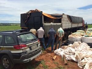 Apreensão de milho ocorreu às margens da BR-262, em Uberaba (Foto: Polícia Civil/ Divulgação)