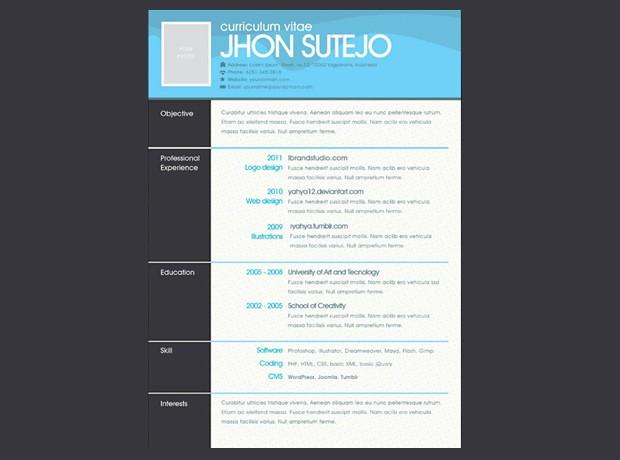 12 Modelos De Curr 237 Culo Para Empreendedores Para Download