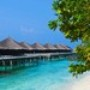 Papel de Parede: Bora Bora Bungalow