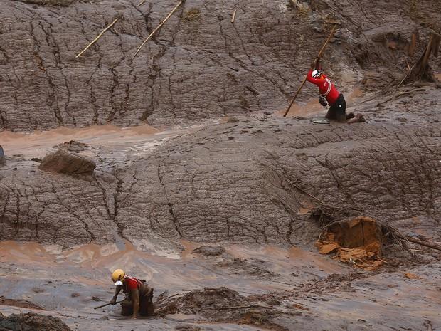 8/11- Bombeiros trabalham nas buscas por vítimas no distrito de Bento Rodrigues, que ficou coberto de lama depois de rompimento de barragens de rejeitos de mineração (Foto: Ricardo Moraes/Reuters)