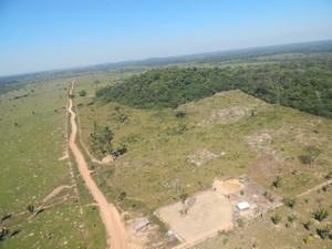 Produtores poderão ainda pagar multas, que podem chegar a R$ 50 milhões por hectare (Foto: Perícia Técnica Científica/Divulgação)