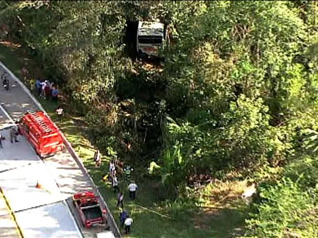 Ônibus da viação 1001 invadiu a mata ao lado da pista (Foto: Reprodução / TV Globo)