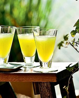 Drinque capim santo (Foto:  )