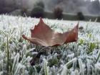Distrito Monte Verde registra 3,1º C em madrugada gelada de junho
