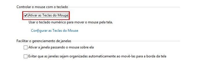 Opção permite controlar o mouse através do teclado numérico (foto: Reprodução/Windows)