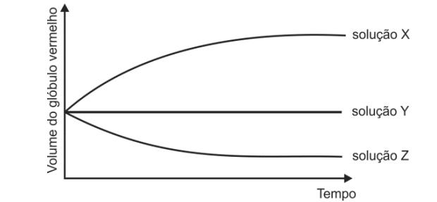 Gráfico com volume do glóbulo vermelho (Foto: Reprodução/Fuvest)