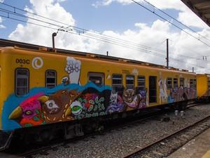 Trens do subúrbio foram coloridos pelos Os Gêmeos e outros artistas (Foto: Daniele Rodrigues/Sedur)