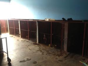 Centro de Controle de Zoonoses em Porto Velho (Foto: Gaia Quiquiô/G1)