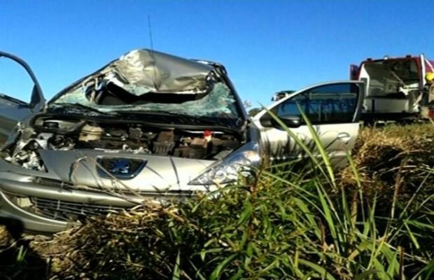 Motorista morre após bater em vaca na GO-436, em Goiás (Foto: Reprodução/TV Anhanguera)