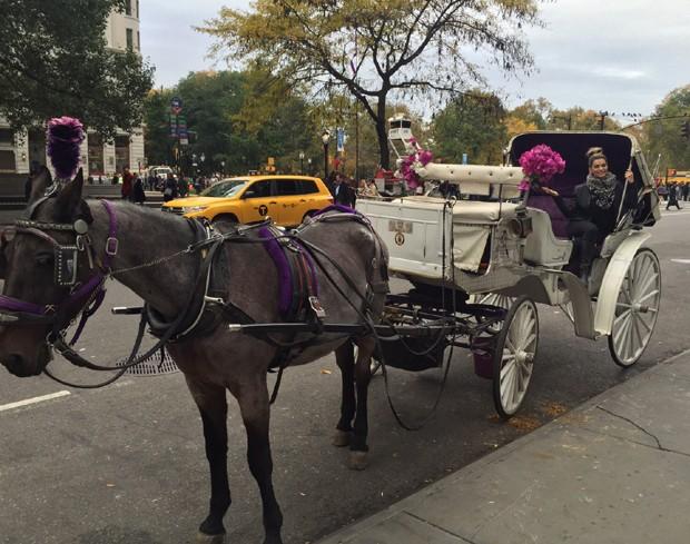 Kelly Key em carruagem em NY (Foto: Arquivo pessoal)