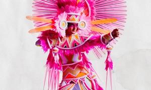 Saiba quanto custa e como comprar fantasias para o desfile do Rio
