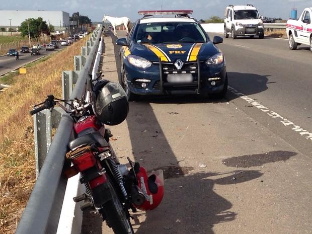 A pessoa que conduzia a moto bateu no animal que teria tentado atravessar a via (Foto: Walter Paparazzo/G1)