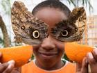 Menino ganha 'máscara' com ajuda de duas borboletas-coruja