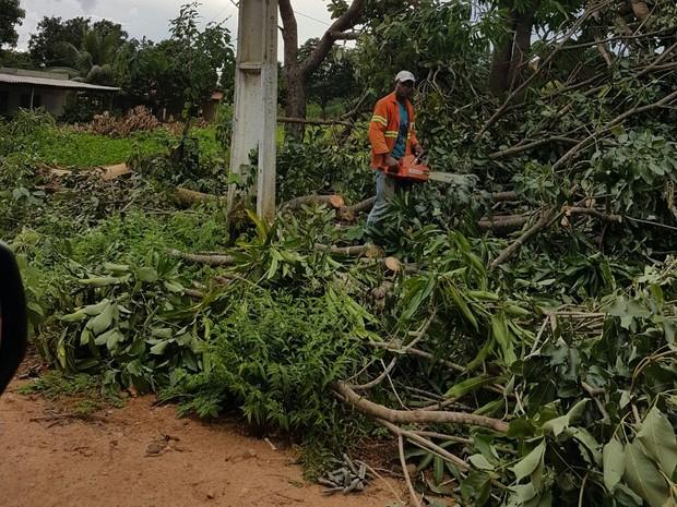 Funcionários foram convocados para limpeza da cidade (Foto: Prefeitura de São Salvador/Divulgação)