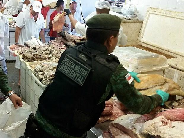 Mercadoria foi apreendida em feira na Manaus Moderna (Foto: Divulgação/Batalhão Ambiental)