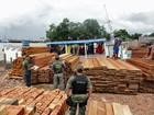 Floresta amazônica perdeu 135 km² no último bimestre de 2010, diz Inpe