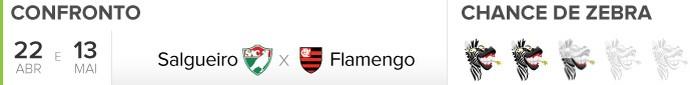 Header Zebrômetro, Salgueiro x Flamengo (Foto: GloboEsporte.com)