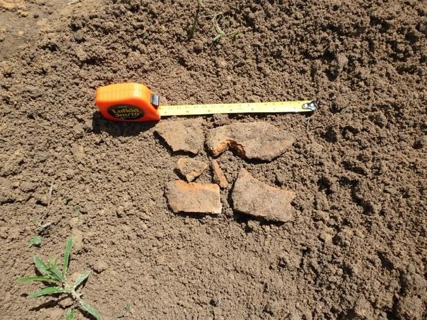 Estudantes já encontravam vestígios de cerâmicas no local (Foto: Divulgação/UEA)