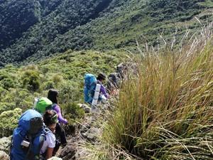 Expedição capixaba feminina chega ao topo da Serra da Mantiqueira  (Foto: Douglas Silva/ Arquivo Pessoal)
